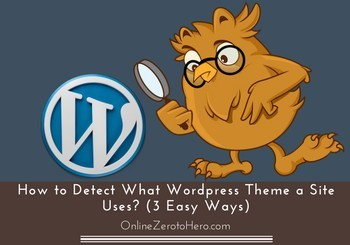 how to detect wordpress theme