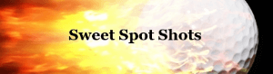sweet spot shots logo