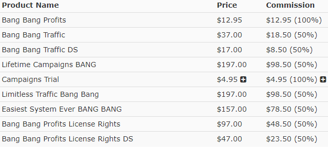 bang bang profits pricing