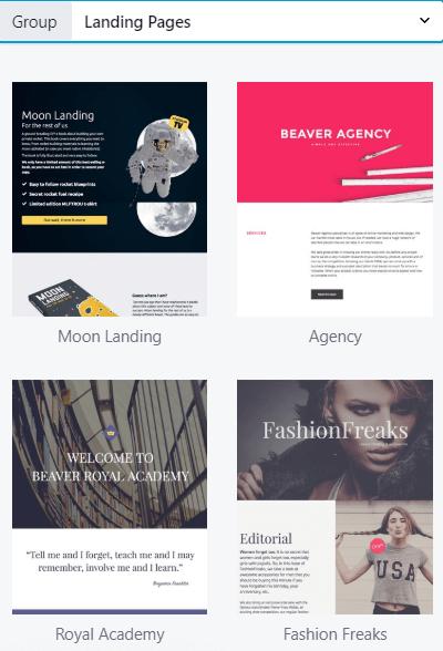 basic beaver templates examples