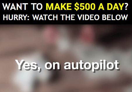 ali profits 500 dollars per day on autopilot
