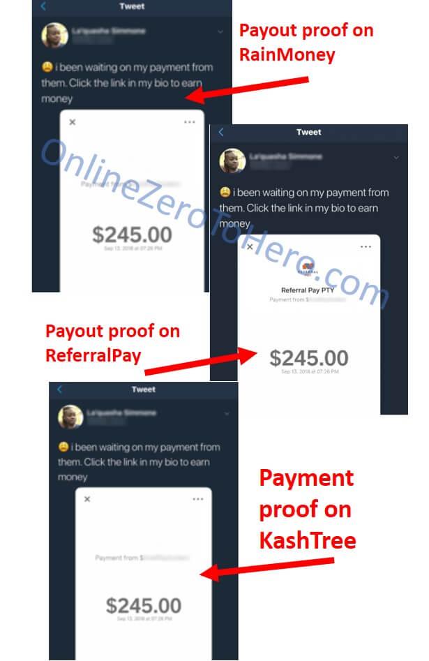 kashtree fake payout proof examples