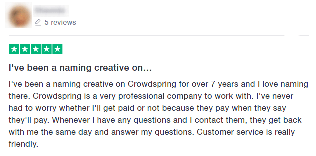 positive crowdspring review example